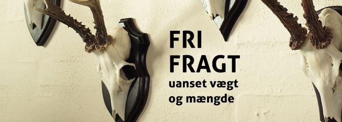 Frifragt